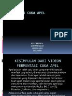 Fermentasi Cuka Apel