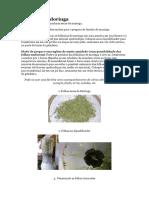 Moringa f.docx