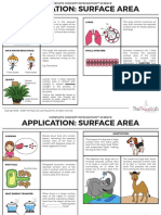 DG1 Application Surface Area Concepts 1sk