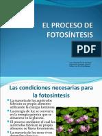 ppt7fotosintesis-130116151633-phpapp02