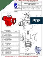 Rsp-1000 - Plug Valves Lt Rev a Uncontrolled Salvano 11-11-14
