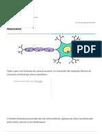 1 - Neuronios, Funcao, Cerebro, Orgao.pdf