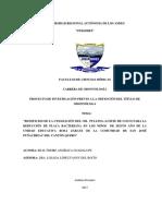 PIUAODONT016-2017 tesis.pdf