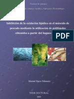 Tesis_Pazos_Manuel.pdf