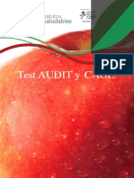 Test-audit-y-cage (1)