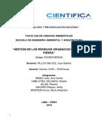 Ecoeficiencia-Puente Piedra final.docx