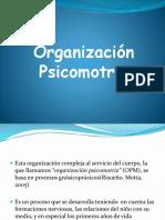 organización psicomotriz
