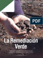 Induambiente Art. La Remediación Verde (2014)