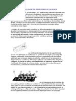 56683235-COMPROBACION-DE-LA-PLANITUD.doc