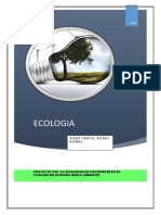 ECOLOGIA-GRUPAL.docx