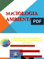2Sociologia ambiental