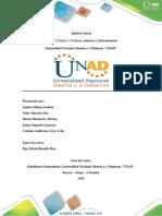 100408_259_Unidad 1 Tarea 1- Vectores, matrices y determinantes.docx