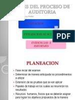 PROCESOS AUDITORIA POINT.pptx