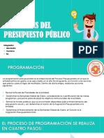 fases del proceso publico.pptx