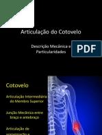 Cinesiologia - Cotovelo 1