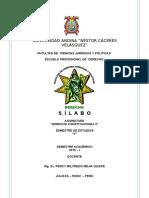 DERECHO CONSTITUCIONAL II.doc