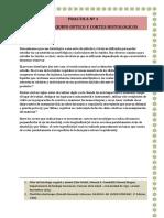 Informe 1-2 Biologia Vegetal