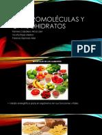Macromoléculas y Carbohidratos