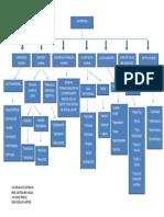 Mapa Conceptual,, Admon Del Talento Humano