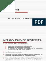 13. Metabolismo de Proteinas