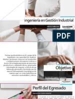 Campaña Publicitaria de Ing. Gestion Industrial