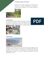 Actividades productivas de guatemala.docx