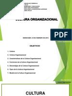 Cultura Organizacional Julio Carruyo