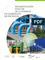 Manual_SGEn_gobiernos_municipales_27112018.pdf