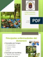 Epidemiologia 29-01-19 Xt.4(Final)