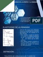 elasticidad y demanda