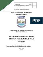 monografia loayza.docx