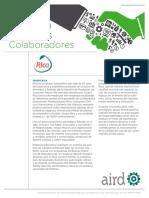 PE-RICA.pdf