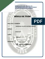 1.-Modulo-de-young.docx