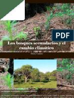 Henry Camino - Los Bosques Secundarios y El Cambio Climático
