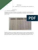 Metodología practica 8.docx
