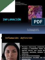Clase 1 - Generalidades de inflamación.pdf