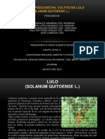Manual Del Cultivo de Lulo_reconocimiento Del Curso_poscosecha.