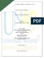 244309880-100411-194-Trabajo-Fase-2-docx.docx
