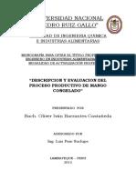 TESINA INGENIERIA QUIMICA MANGO CONGELADO.docx