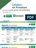Curso-Gestão-de-Processos-para-Resultados-Avançado.pdf