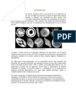 DIATOMITAS FOSTATOS SALMUERAS.doc