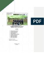 INFORME-FINAL-PROYECCION 2.docx