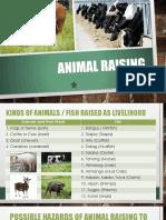 Animal Raising
