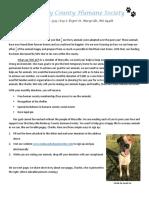 Nodaway County Humane Society-Wren Speaks