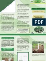 Acido piroleñoso usos.pdf