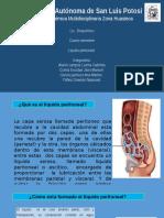 264171062 Liquido Peritoneal Expo