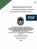 Víctor_Tesis_títuloprofesional_2016.pdf