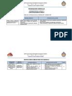 Programación Curricular 2018-I (CI)LUCHO.docx
