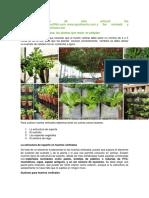 hortalizas para siembra vertical