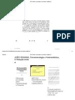 JOÃO PAISANA, Fenomenologia e Hermenêutica, A Relação Entre